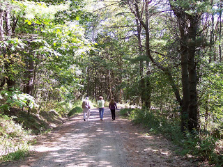 Walk on gravel road in woods of Maine